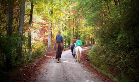 5-23-2016 horse back riding
