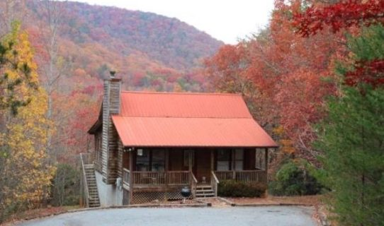 cabin fall pic