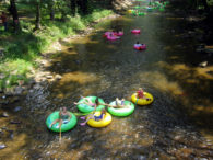 There are many affordable family friendly activities in Helen, GA.