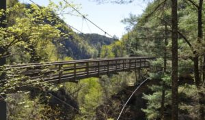 Tallulah Gorge Bridge